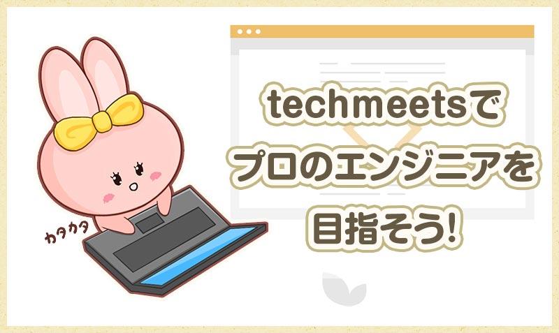 techmeetsでプロのエンジニアを目指そう!